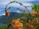 View on Hiva Oa