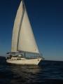 marutji-sailing